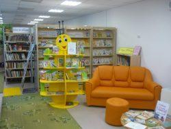 Селивановская детская районная библиотека до ремонта